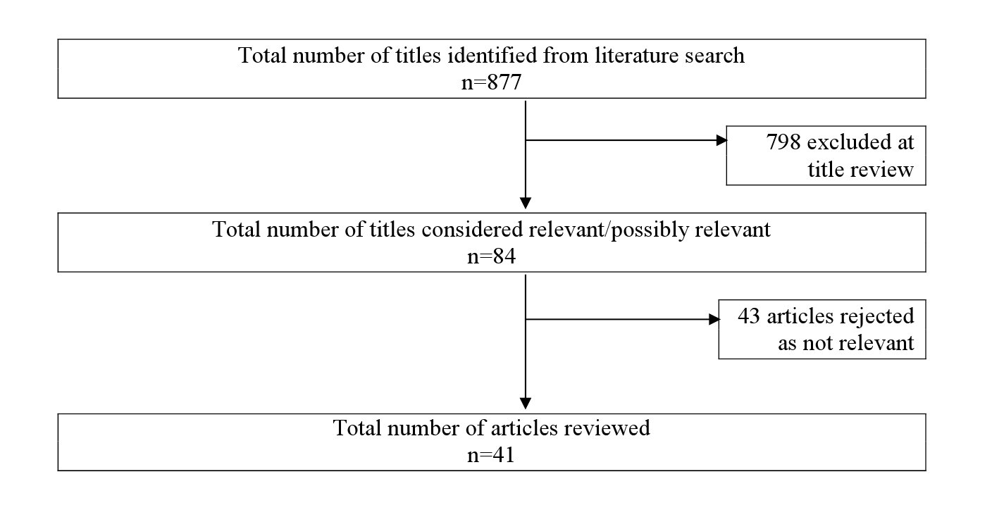 Literature review methods